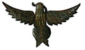 Flying Bagula