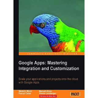 Google Apps Mastering Integration and Customization