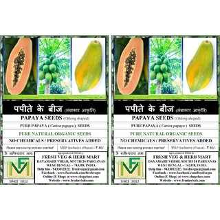 Papaya Seeds - Oblong Shaped