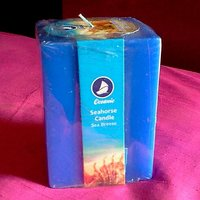 Seahorse Scented Pillar Candle With Beautiful Design Pack Of 2