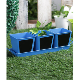 Set of 3 Herb Set Chalk Board Blue