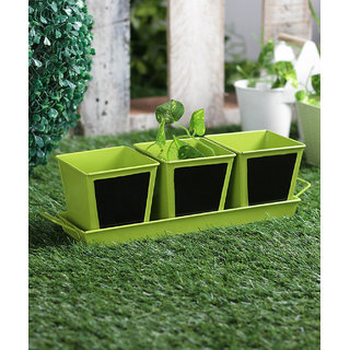 Set of 3 Herb Set Chalk Board Green