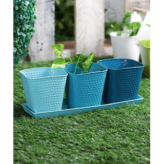 Set of 3 Herb Set Blue