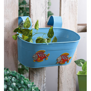 Fish Tub Blue