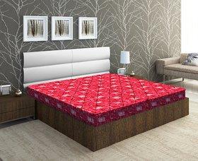 bellz single  foam red  marron mattress 35724inch combo offer pack of 2