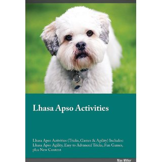 Lhasa Apso Activities Lhasa Apso Activities (Tricks, Games  Agility) Includes
