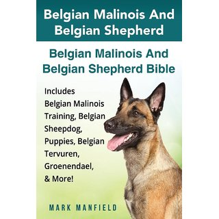 Belgian Malinois And Belgian Shepherd