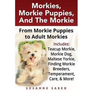 Morkies, Morkie Puppies, And the Morkie