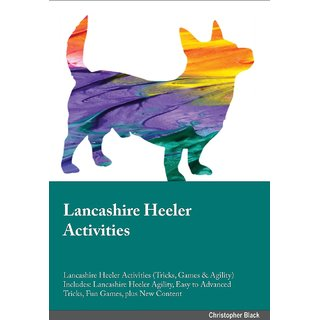 Lancashire Heeler Activities Lancashire Heeler Activities (Tricks, Games  Agility) Includes