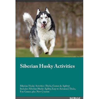 Siberian Husky Activities Siberian Husky Activities (Tricks, Games  Agility) Includes