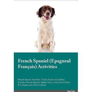 French Spaniel Epagneul Franais Activities French Spaniel Activities (Tricks, Games  Agility) Includes