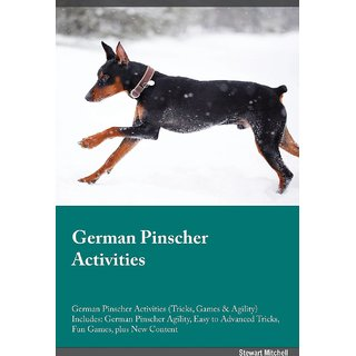 German Pinscher Activities German Pinscher Activities (Tricks, Games  Agility) Includes