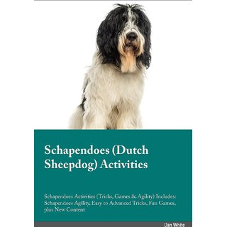 Schapendoes Dutch Sheepdog Activities Schapendoes Activities (Tricks, Games  Agility) Includes