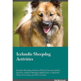 Icelandic Sheepdog Activities Icelandic Sheepdog Activities (Tricks, Games  Agility) Includes