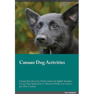 Canaan Dog Activities Canaan Dog Activities (Tricks, Games  Agility) Includes