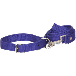 PET CLUB51 STANDARD DOG COLLAR AND LEASH- LARGE-BLUE