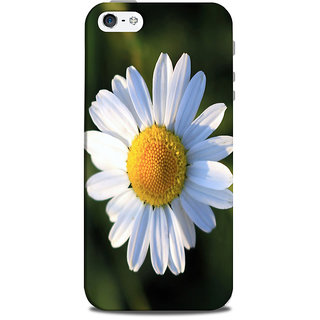Mikzy Flower Printed Designer Back Cover Case for Iphone 5/5S