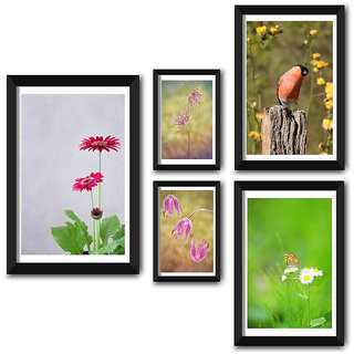 Wall Frame Set of Natures Beautiful Selfie