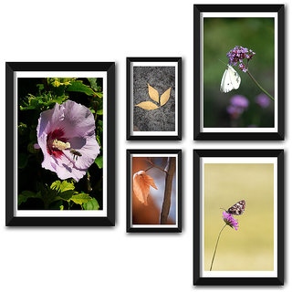 Wall Frame Set of Natures Beautiful Selfie