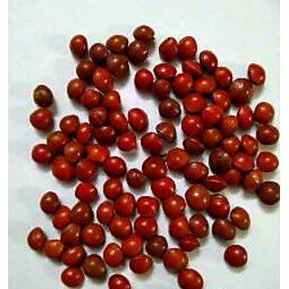 Pure Red natural Chirmi/Gunja (Rakht Gunja) Energized valuable quality seeds (Real Seeds)11 pcs.
