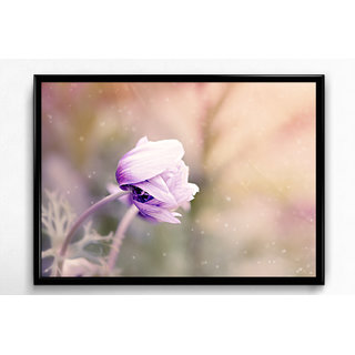 Wall Frame of Natures Beautiful Selfie LBFB-22