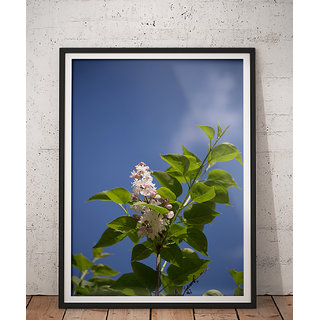 Wall Frame Natures Beautiful Selfie PBFD-33