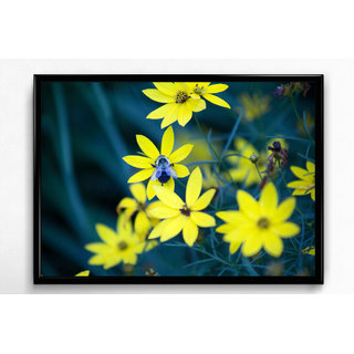 Wall Frame of Natures Beautiful Selfie LBFB-12