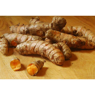 100 Pure Whole Haldi sticks  Organic,KERALA FRESH turmeric