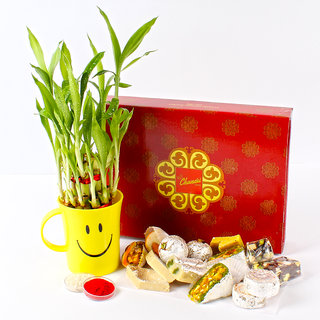 Good Luck Plant with Assorted Sweets and Tikka