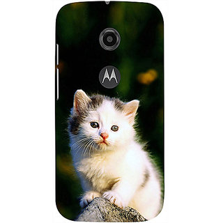 Casotec Sweet Cat Design 3D Printed Hard Back Case Cover for Motorola Moto E 2nd Generation
