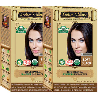 Indus Valley 100 Certified Organic Botanical Soft Black Hair Color - One Touch Pack - Twin Set