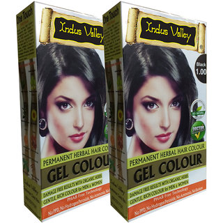 Indus Valley Organically Natural Gel Black 1.00 Permanent Hair Color - One Touch Pack - Twin Set