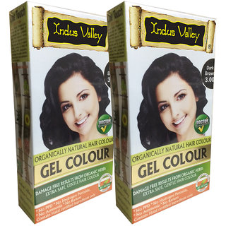 Buy Indus Valley Organically Natural Gel Dark Brown 3.00 Hair Color ...