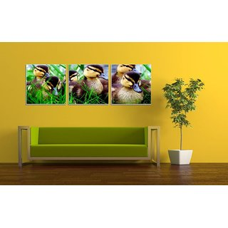 Decor Kafe Ducks Group Three Pieces Wall Poster