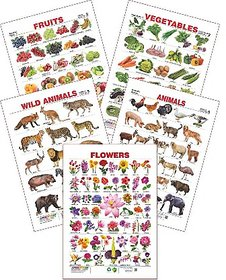 Educational Charts (Wild Animals, Domestic Animals, Assorted Fruits 2, Vegetables 2  Flowers)  set of 5