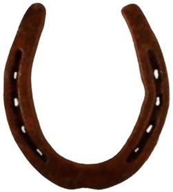 Kriwin Black Horse Shoe Kale Ghode Ki Naal [Iron] - 1 Pc