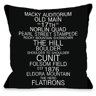Bentin Home Decor Boulder Colorado Landmarks Throw Pillow w/Zipper by OBC, 18