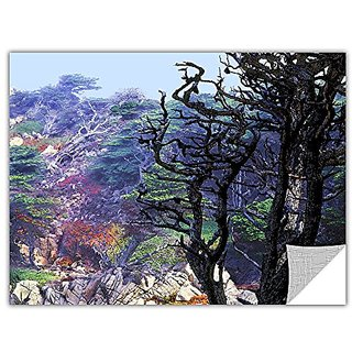 ArtWall ArtApeelz Dean Uhlinger Point Lobos Morning Removable Wall Art Graphic, 36 by 48-Inch