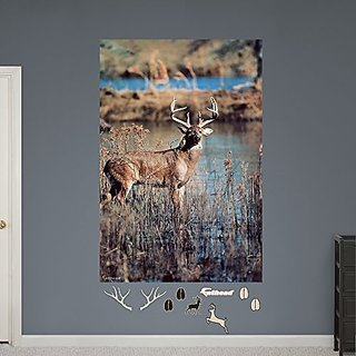 Fathead White-Tail Buck Mural Real Big Wall Decals
