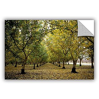 ArtWall Kathy Yates Fall Orchard Appeelz Removable Graphic Wall Art, 12 by 18