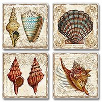 Coastal Nautulis Scallop Shells Absorbent Coasters Set Of 4 Highland Graphics