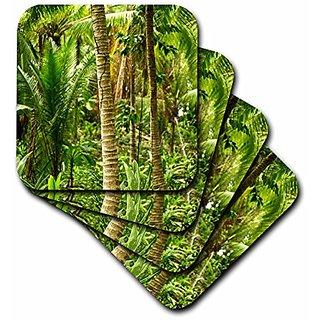 3dRose cst_10467_1 Tropical Plants Soft Coasters (Set of 4)