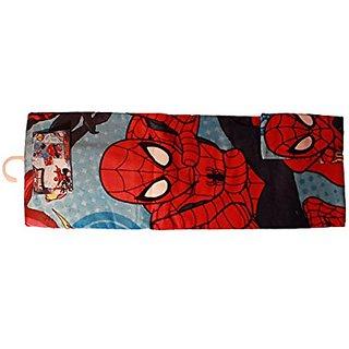 Spiderman 2 Piece Bath Towel and Wash Cloth Set