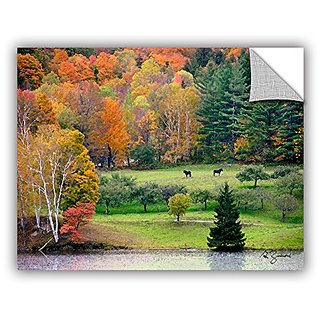 ArtWall George Zucconis Killington Vermont Art Appeelz Removable Graphic Wall Art, 18 x 24