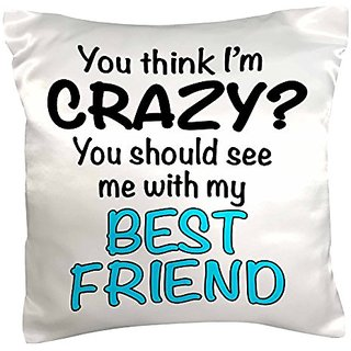 3dRose pc_163922_1 You Think Im Crazy You Should See Me with My Best Friend, Turquoise Pillow Case, 16