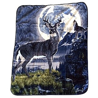 Royal Plush Raschel Throw Night Call 50 in X 60 in