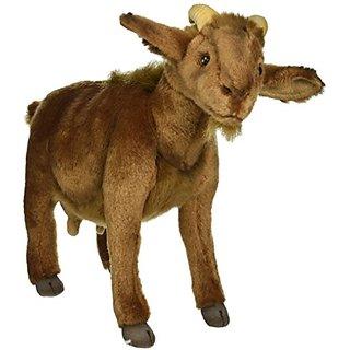 Mountain Goat 15