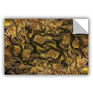 ArtWall Cora Nieles Acer Palmatum Dissectum Ornatum Appeelz Removable Graphic Wall Art, 32 by 48