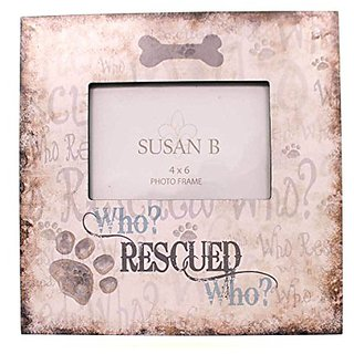 Buy Animal Who Rescued Who Frame Wood Dog Cat Adoption Gf96 Online
