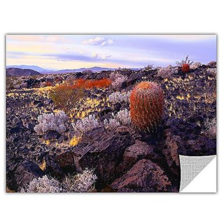 ArtWall Dean Uhlinger In The Mojave Removable Graphic Wall Art, 14 by 18-Inch